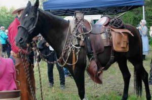 Kisoissa nähtiin lännenratsastusta ja karjanajoa 2014, tässä Axelin hevonen